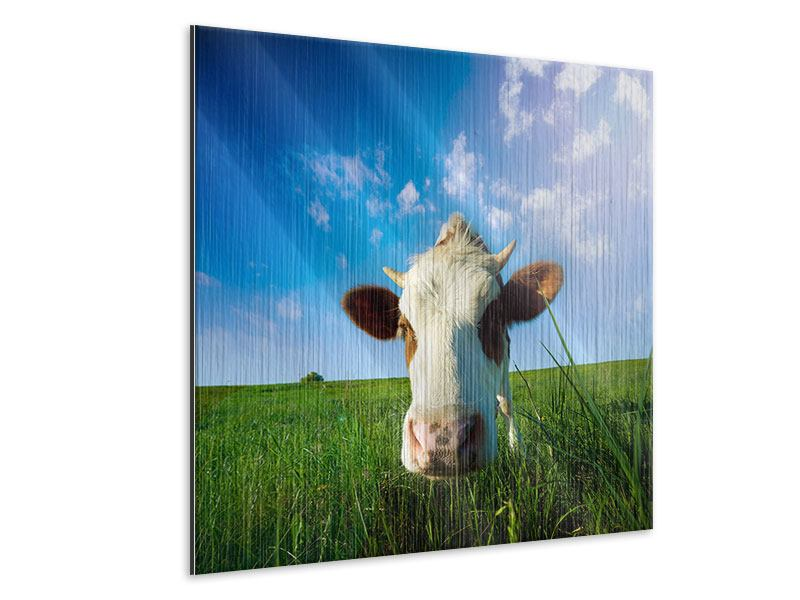 Metallic-Bild Die Kuh