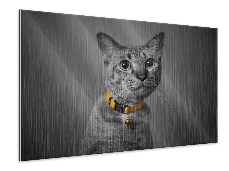 Metallic-Bild Katzenlady