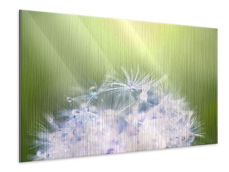 Metallic-Bild Pusteblume XL im Morgentau