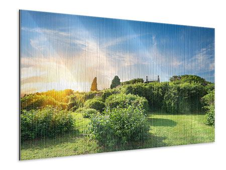 Metallic-Bild Sonnenaufgang im Park
