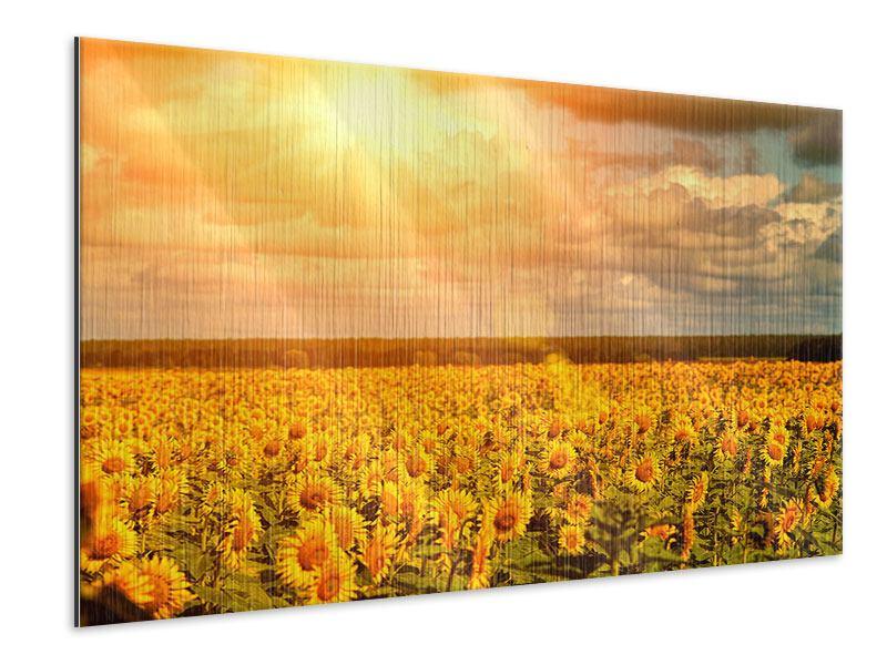 Metallic-Bild Goldenes Licht für Sonnenblumen