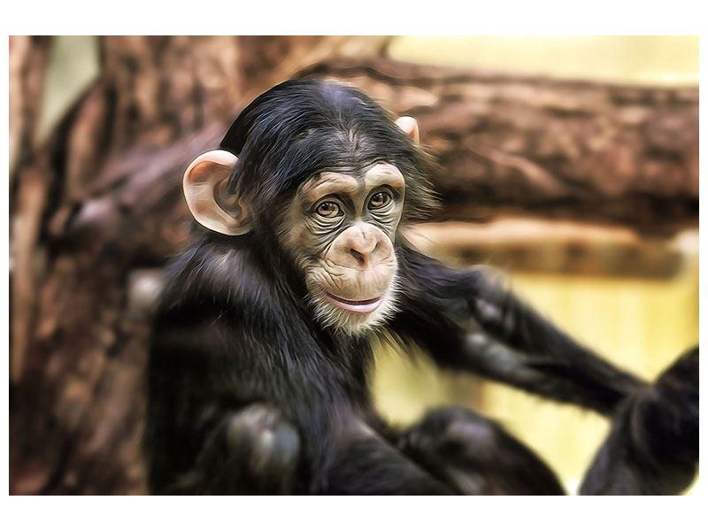 Metallic-Bild Der Schimpanse