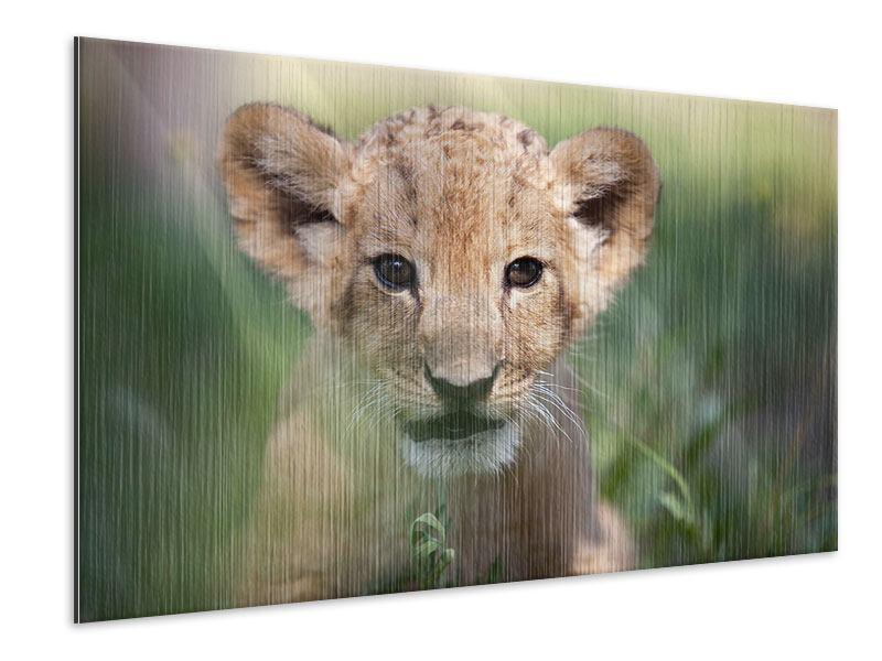 Metallic-Bild Das Löwenbabay