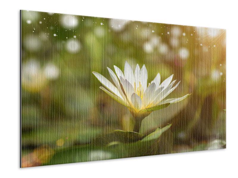 Metallic-Bild Lilien-Lichtspiel