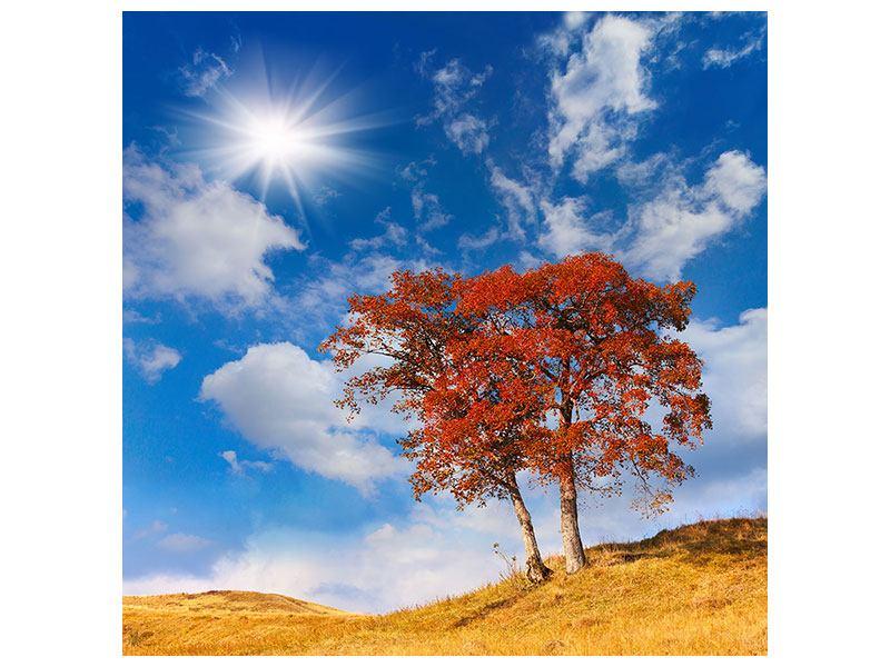 Metallic-Bild Der Herbstbaum