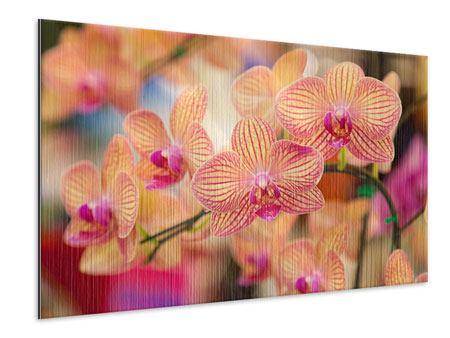 Metallic-Bild Exotische Orchideen