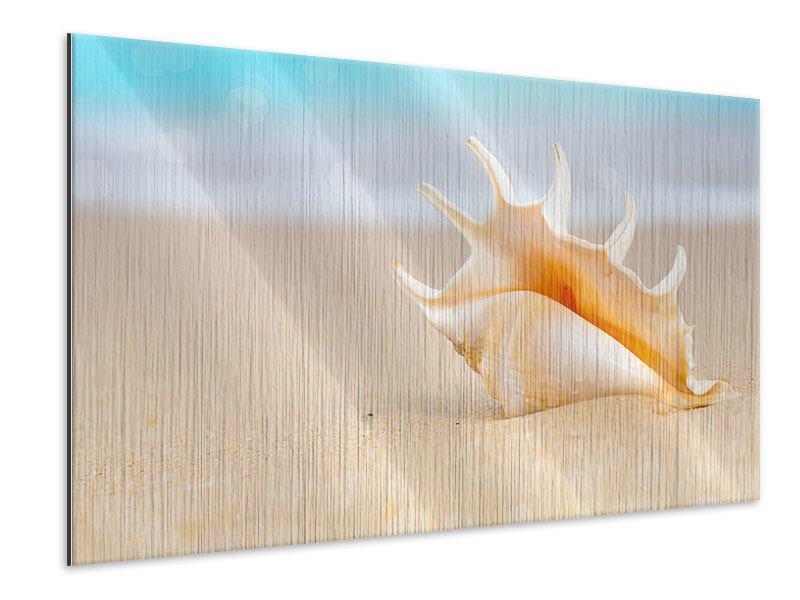 Metallic-Bild Die Muschel am Strand