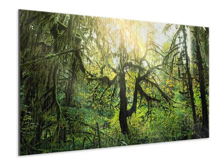 Metallic-Bild Verträumter Wald
