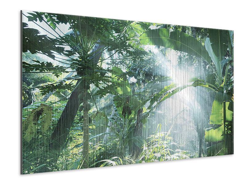 Metallic-Bild Dschungelstar