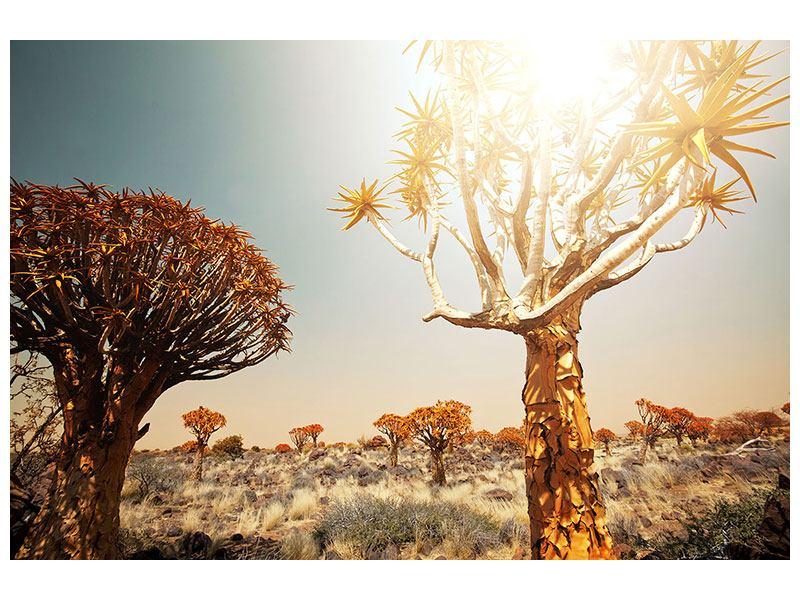 Metallic-Bild Afrikanische Landschaft