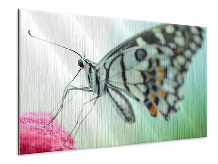 Metallic-Bild Schmetterling XXL