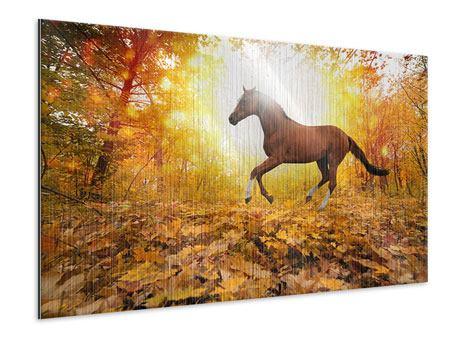 Metallic-Bild Vollblut im Herbstwald