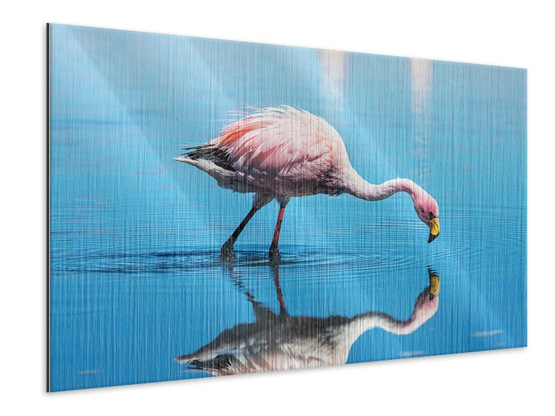 Metallic-Bild Der Flamingo
