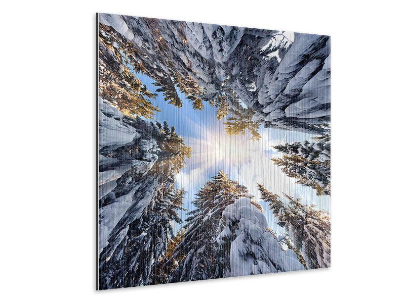 Metallic-Bild Verschneite Tannenspitzen in der Sonne