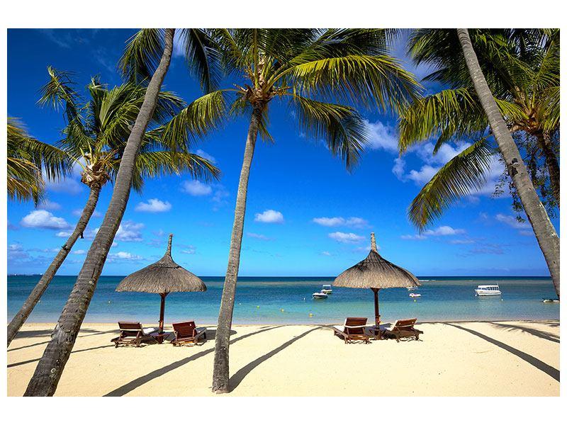 Metallic-Bild Mauritius