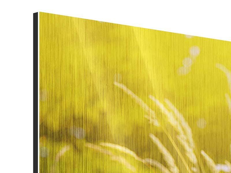 Metallic-Bild Sommerliche Blumenwiese