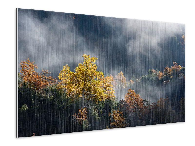 Metallic-Bild Mondscheinwald
