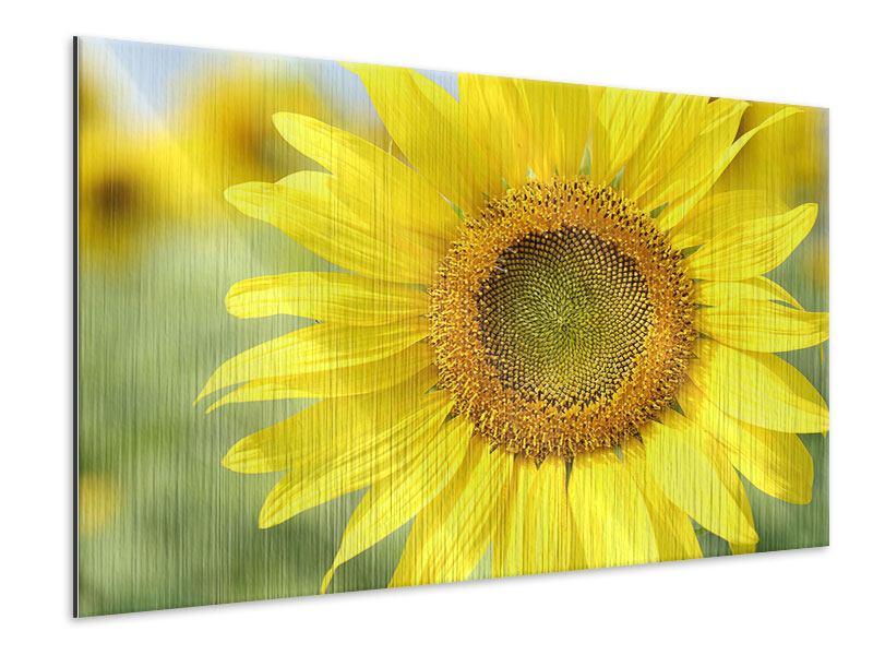 Metallic-Bild Die Blume der Sonne