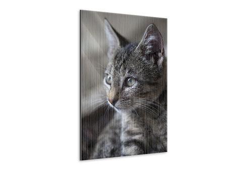 Metallic-Bild Tigerkatze