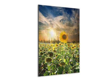Metallic-Bild Sonnenblumen im Sonnenuntergang