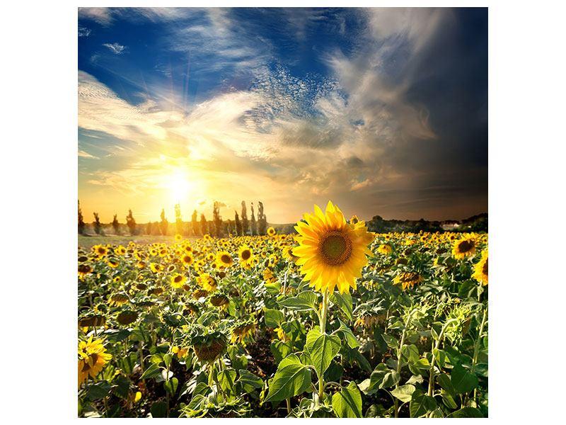 Metallic-Bild Sunny Flowers