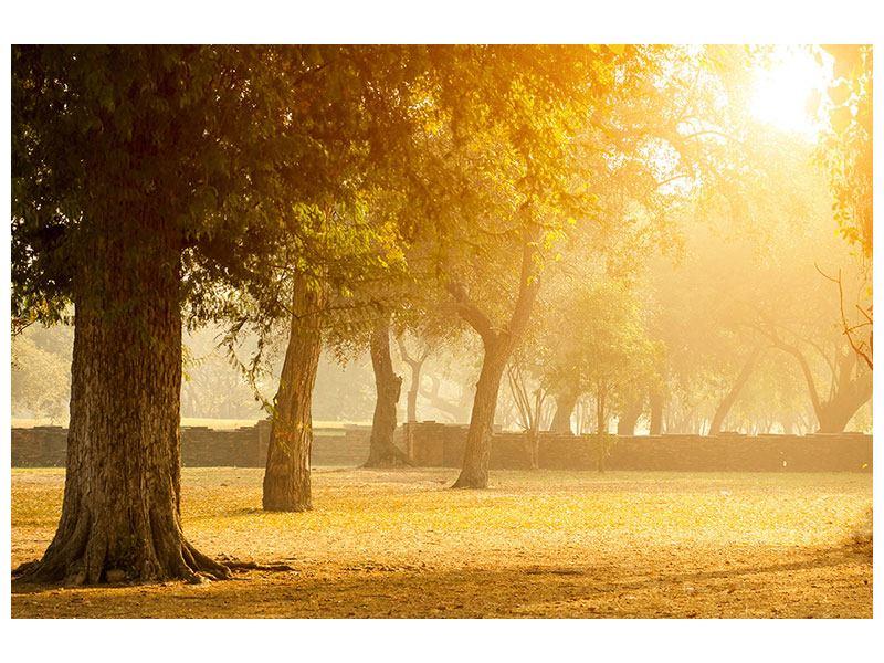Metallic-Bild Romantik unter Bäumen