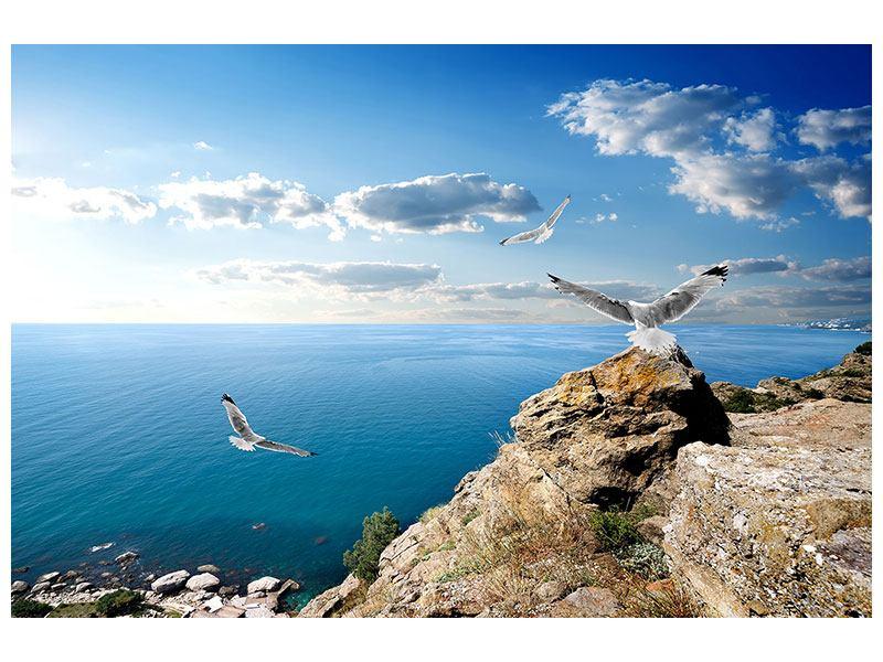 Metallic-Bild Die Möwen und das Meer