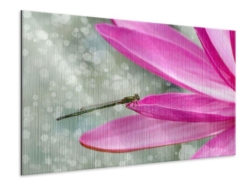 Metallic-Bild Libelle auf dem Seerosenblatt