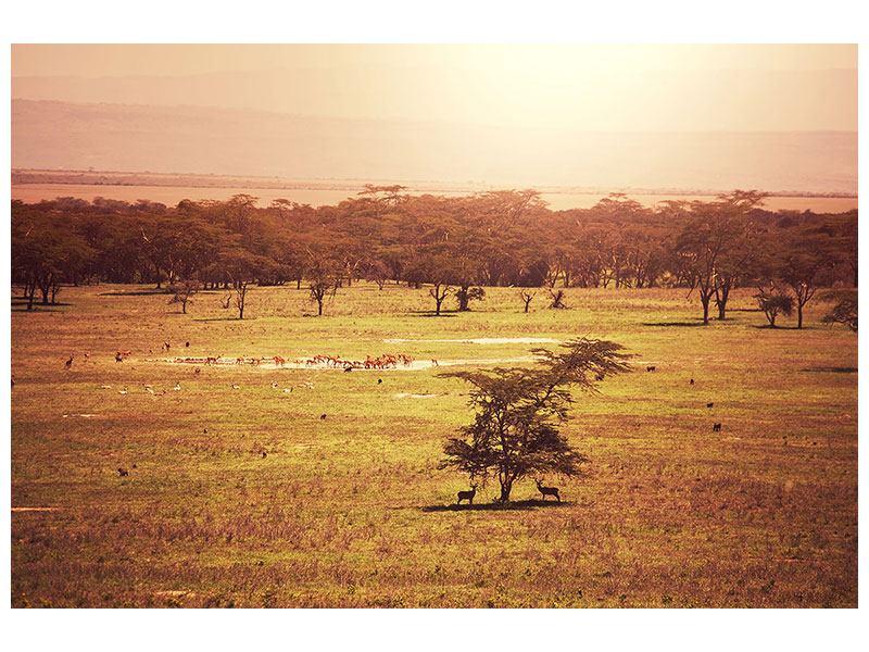 Metallic-Bild Malerisches Afrika