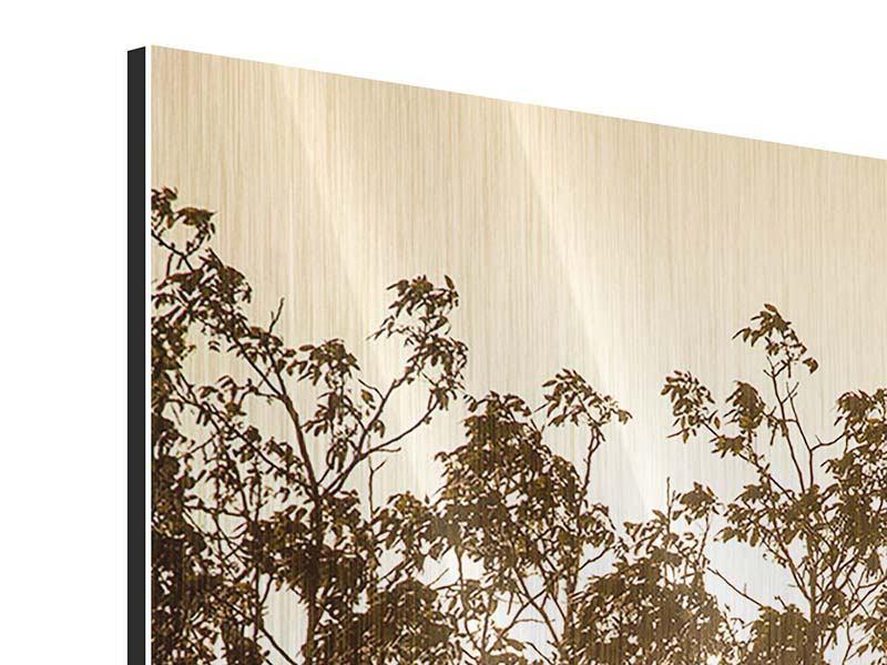 Metallic-Bild Das Licht im Baum
