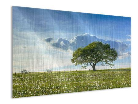 Metallic-Bild Frühlingsbaum