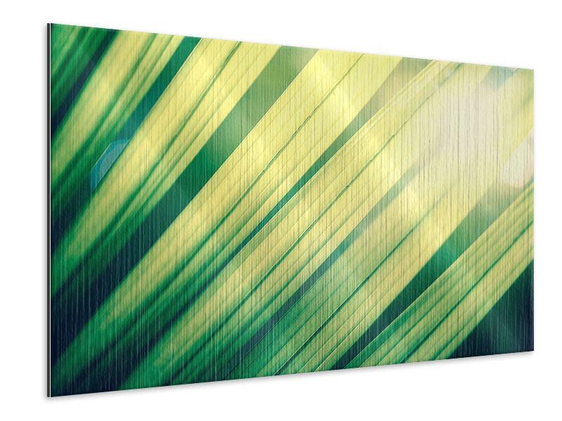 Metallic-Bild Beleuchtetes Palmblatt