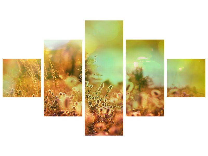 Metallic-Bild 5-teilig Blumenwiese in der Abenddämmerung