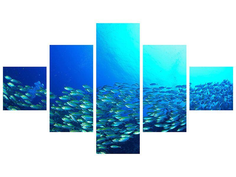 Metallic-Bild 5-teilig Fischschwarm