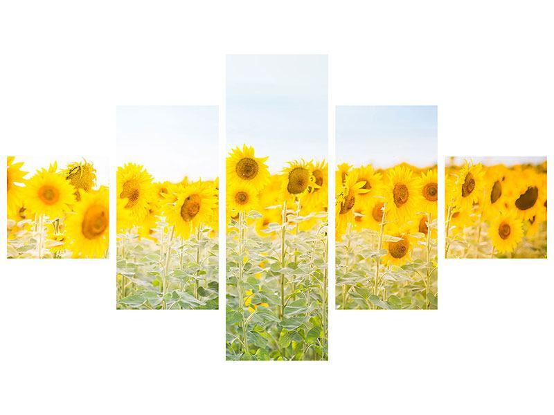 Metallic-Bild 5-teilig Im Sonnenblumenfeld