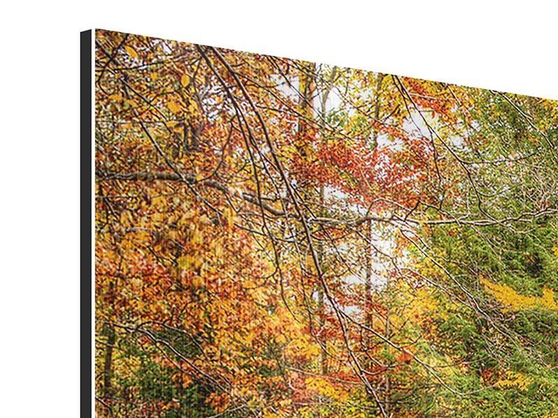 Metallic-Bild 5-teilig Herbst beim Wasserfall