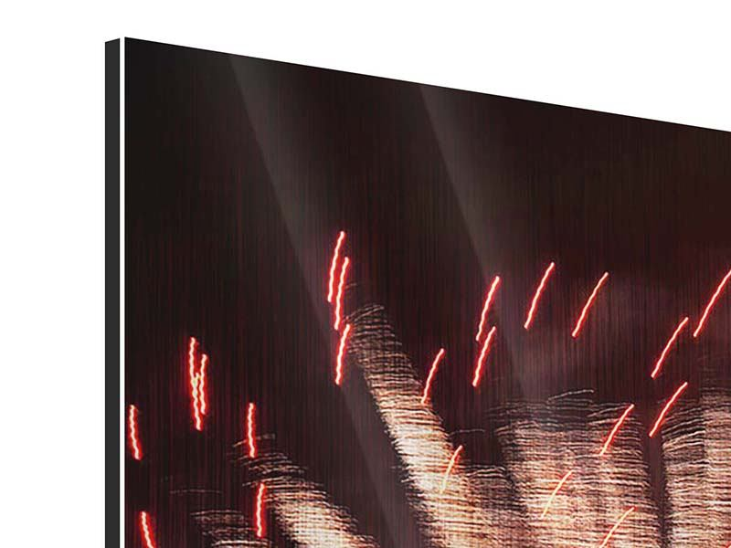 Metallic-Bild 5-teilig Close Up Feuerwerk
