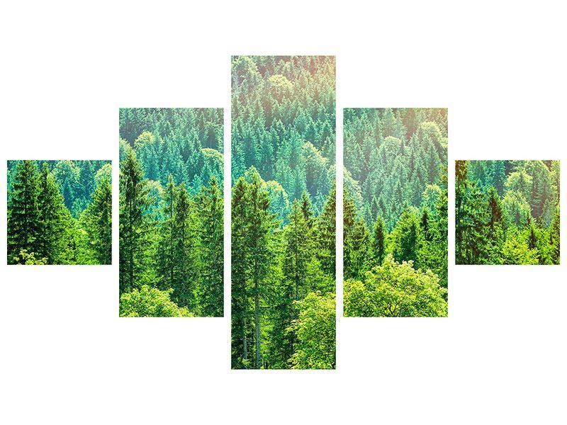 Metallic-Bild 5-teilig Der Waldhügel