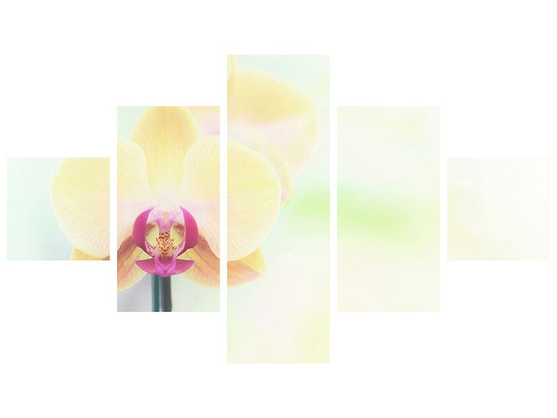Metallic-Bild 5-teilig Lovely Orchidee