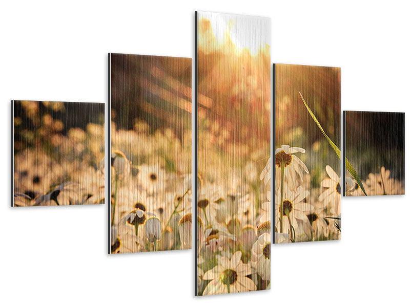 Metallic-Bild 5-teilig Gänseblümchen bei Sonnenuntergang