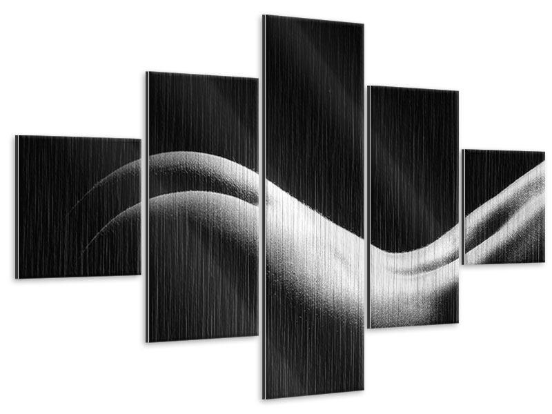 Metallic-Bild 5-teilig Nude