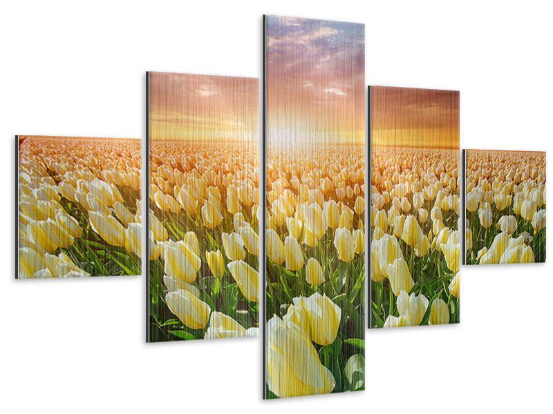Metallic-Bild 5-teilig Sonnenaufgang bei den Tulpen