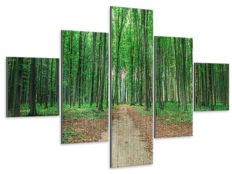 Metallic-Bild 5-teilig Tannenwald