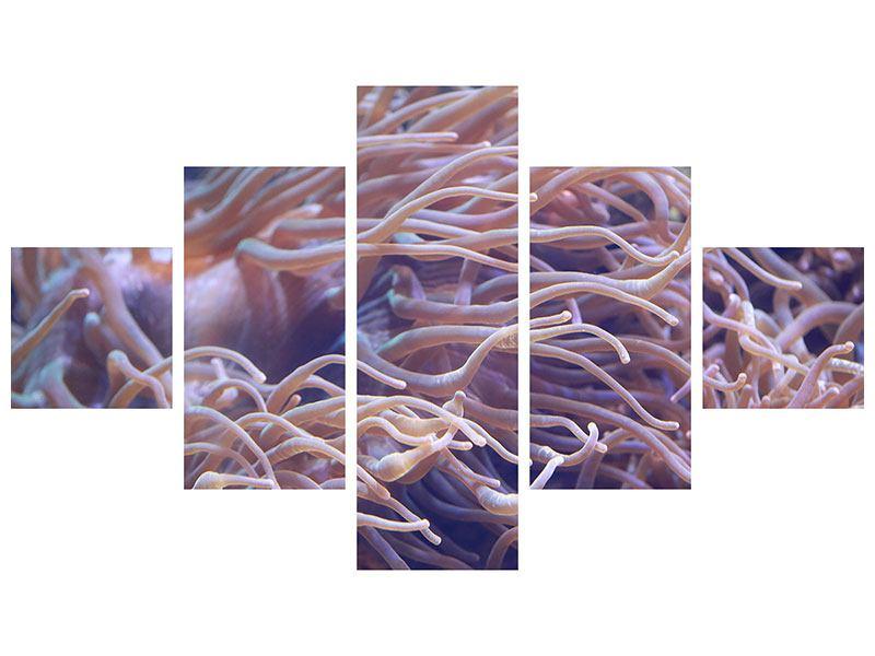 Metallic-Bild 5-teilig Korallenriff