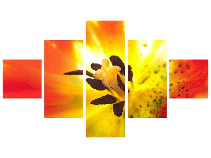 Metallic-Bild 5-teilig Die Narbe einer Tulpe XXL