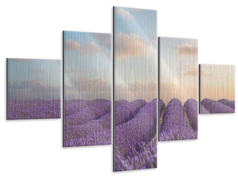 Metallic-Bild 5-teilig Das blühende Lavendelfeld