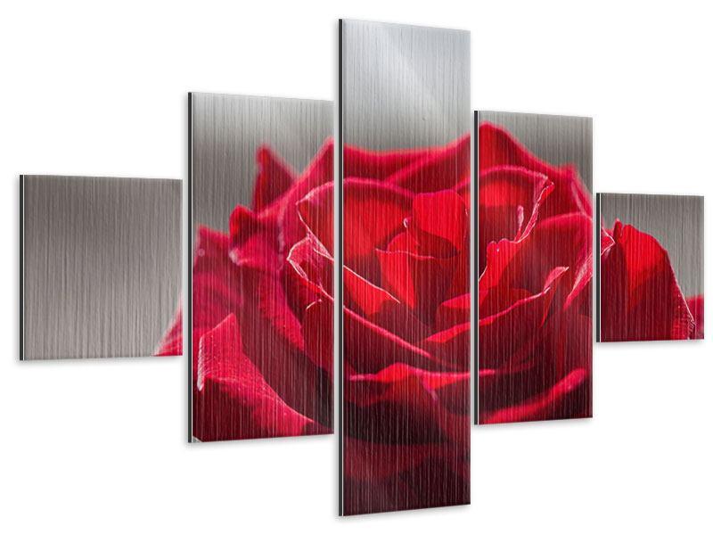 Metallic-Bild 5-teilig Rote Rosenblüte