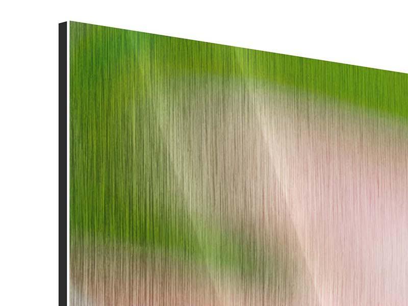 Metallic-Bild 5-teilig Close Up einer Blüte