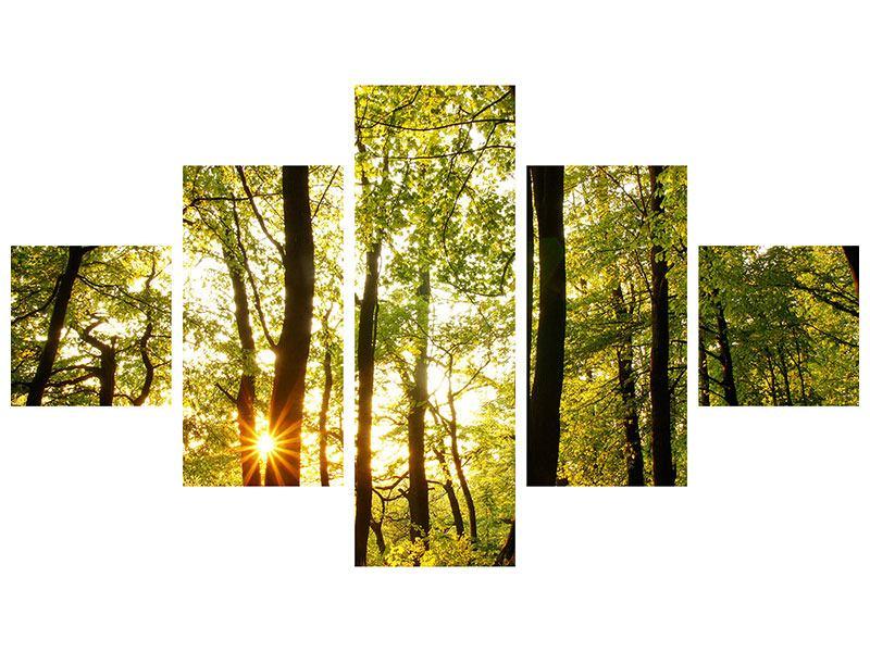 Metallic-Bild 5-teilig Sonnenuntergang zwischen den Bäumen
