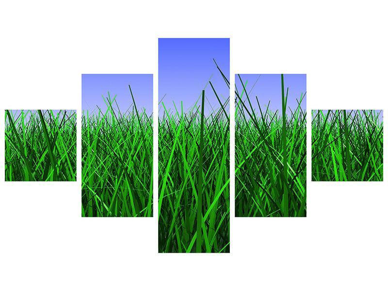 Metallic-Bild 5-teilig Im Gras